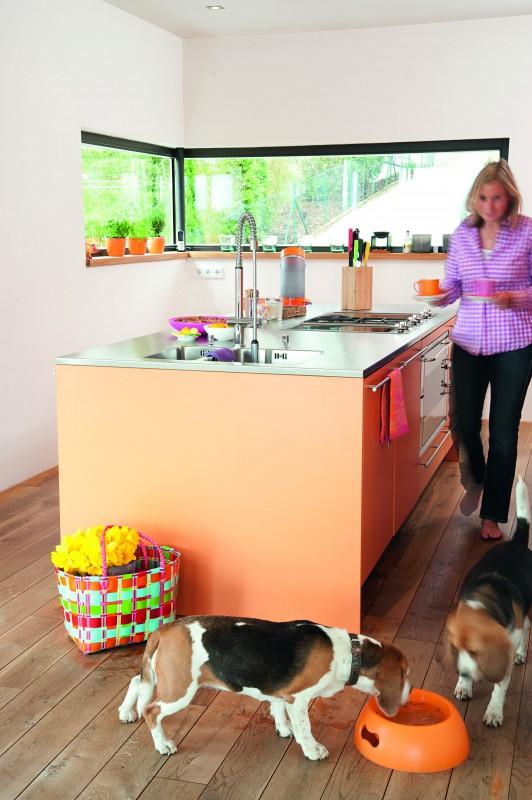 Callwey Wohnen mit Hund_Strauss