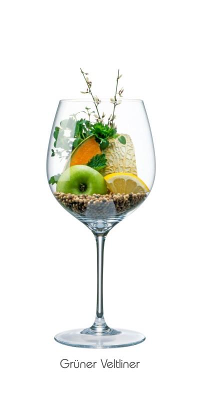 Apfel (grün), Zitrone, Blüte, Netzmelone, Kräuter, Pfeffer (schwarz + weiß), Minze